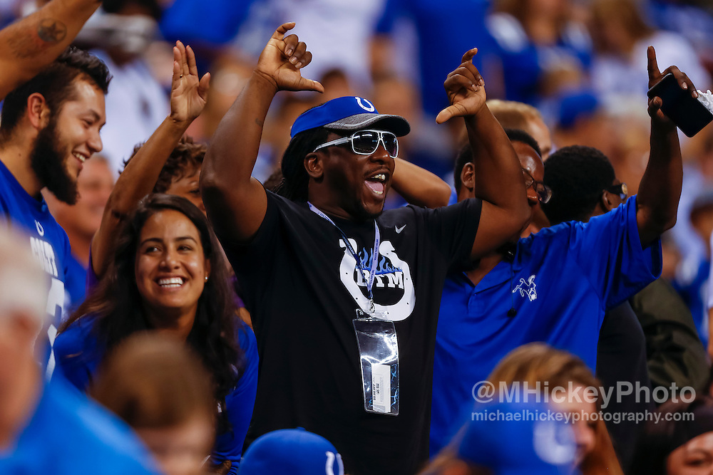 INDIANAPOLIS, IN - AUGUST 20: An Indianapolis Colts fan is seen during the game against the Baltimore Ravens at Lucas Oil Stadium on August 20, 2016 in Indianapolis, Indiana.  (Photo by Michael Hickey/Getty Images)