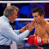 WBO title match organized by Universum Production in Budapest, Hungary. Saturday, 22. August 2009. ATTILA VOLGYI