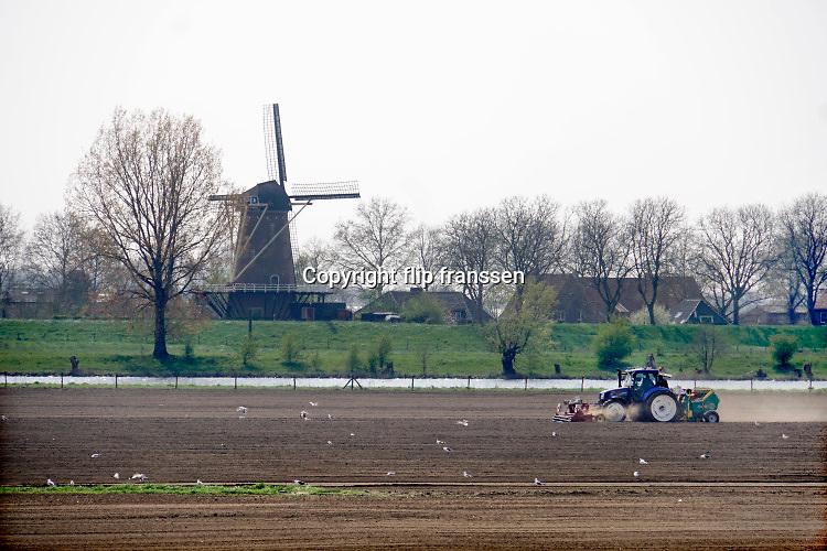 Nederland, Batenburg, 15-4-2019Een boer, loonwerker, poot aardappelen, buitendijks, buiten de dijk, in de uiterwaarden van de rivier de Maas . Het gebeurt automatisch via een ingenieus mechaniek achter de tractor. Aan de overkant een klassieke oude molen, windmolen . Foto: Flip Franssen