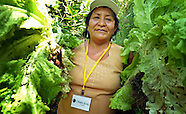 Peru-Food Security Forum, San Ignacio