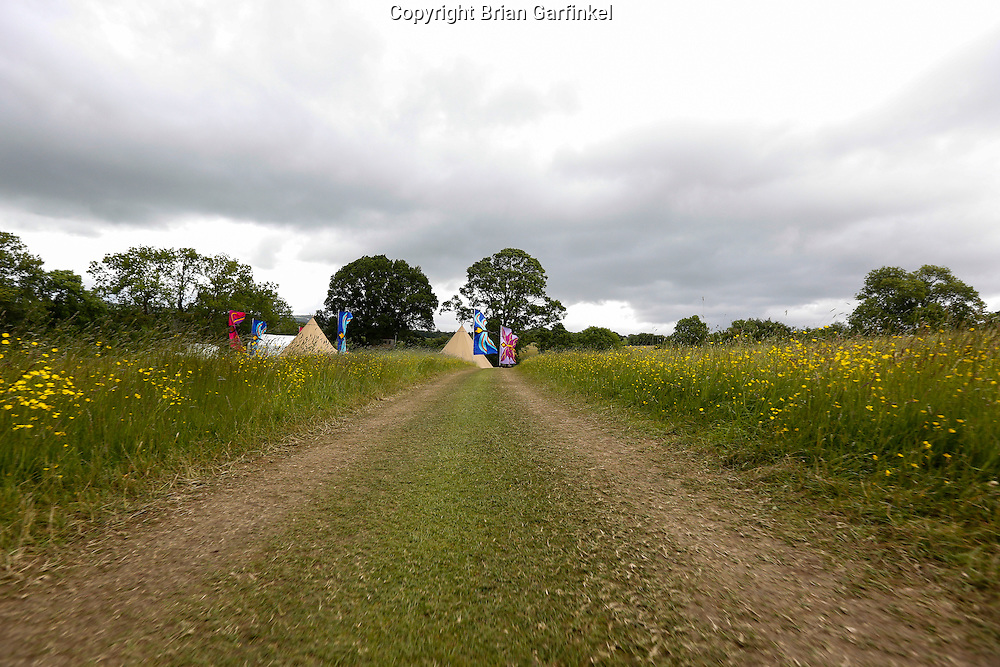 The road leading to the Caulfield/Mulryan family reunion at Ardenode Stud, County Kildare, Ireland on Sunday, June 23rd 2013. (Photo by Brian Garfinkel)