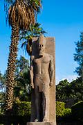 Statue at the  open air Mit Rahina Museum, Al Badrashin, Giza Governate, Egypt.