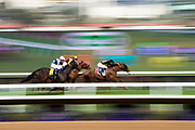 NOVEMBER 3, 2017: BREEDERS' CUP. General racing action from the Breeders' Cup at Del Mar.