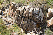 Joints in rock enlarged by weathering processes, Lizard peninsula, Cornwall, England, UK