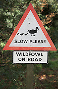 Hand made red triangle road sign wildfowl crossing