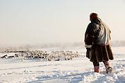 A Sami reindeer herder watching reindeer the countryside near Karasjok, Finnmark region, northern Norway