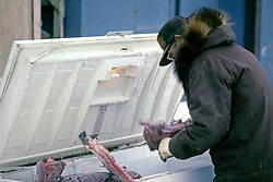 Retrieving Caribou Meat From Freezer