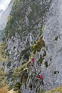 Donnerkogel Klettersteig, a via ferrata route on the Grosser Donnerkogel above Vorderer Gosausee, viewed from the Austriaweg. Dachstein, Salzkammergut, Austria © Rudolf Abraham