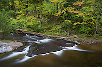 I liked the pattern the water made as the Big Carp River flowed toward Lake Superior.<br /> <br /> Date Taken: 9/30/14