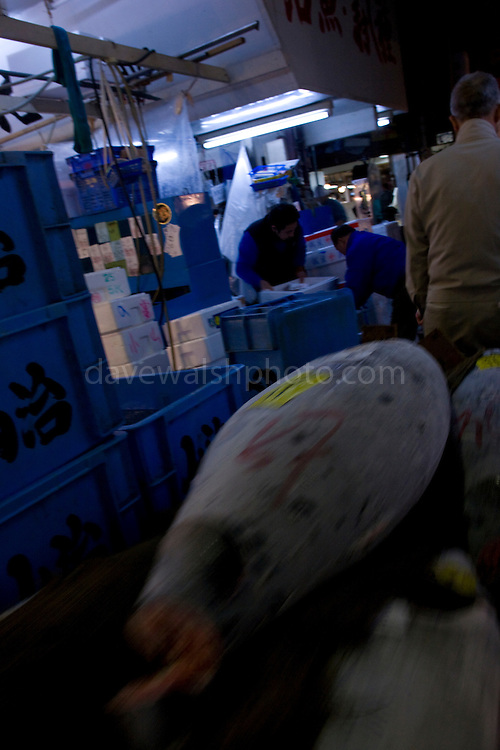Tuna on a handcart being pulled through Tokyo Tsukiji Fish Market..Tokyo Metropolitan Central Wholesale Market or Tsukiji Fish Market is the largest fish market in the world.