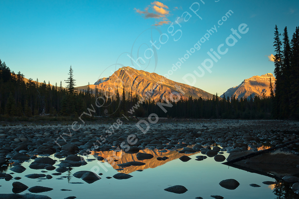 We camped at the Wabasso Campground near Jasper, which is right beside the Athabasca River. The setting sun lit up the slopes of Mount Kerkeslin and Mount Hardisty as they loomed over the river. It was very beautiful!..©2010, Sean Phillips.http://www.RiverwoodPhotography.com