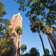 University of Florida-Iconic Century Tower