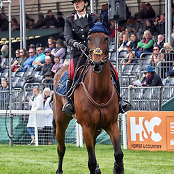 Arianna Schivo Badminton Horse Trials Gloucester England May 2019, Arianna Schivo eventing riding Quefira De L'ormeau representing Italy at the 2019 Badminton Horse Trials Badminton Horse trials 2019 Winner Piggy French wins the title