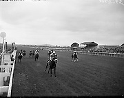 """24/06/1959<br /> 06/24/1959<br /> 24 June 1959<br /> Irish Derby at the Curragh Racecourse. Picture shows""""Fidalgo"""" (centre), owned by G.A. Oldham and ridden by Joseph Mercer winning the Derby from """"Bois Belleau"""" owned by Mrs A.B. Biddle and ridden by L. Ward and """"Anthony"""" owned by Lord Fingall and ridden by D.B. Brennan."""