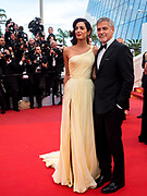Cannes , France<br /> 12/05/2016<br /> US actor George Clooney (R) and wife British human rights barrister Amal Clooney (L)  attend the screening of Money Monster at the Palais des Festival during The 69th Annual Cannes Film Festival