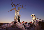 """One of many mobile art installations at Burning Man that became a gathering point in the late afternoon. The """"Spirit of Time"""" or the """"Tree of Time"""" was constructed by artist Dana Albany out of animal bones and has a constant droning sound component. Burning Man is a performance art festival known for art, drugs and sex. It takes place annually in the Black Rock Desert near Gerlach, Nevada, USA."""