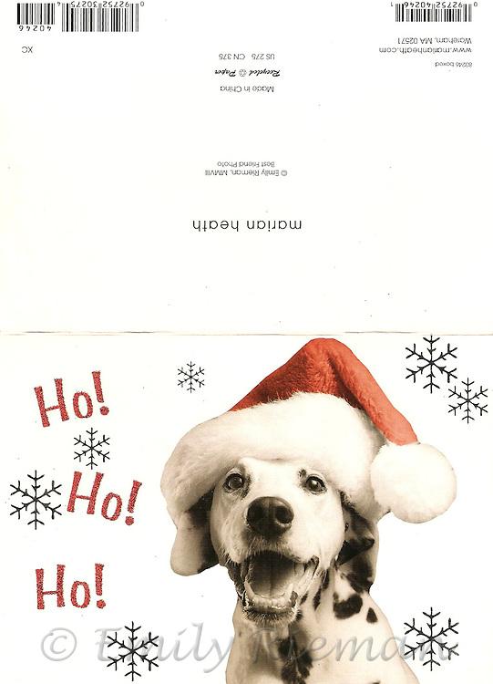 Christmas Card - dalmation in a Santa hat - Marian Heath publishers
