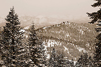24 February 2008: View of snow covered mountains during a late winter storm in Lake Tahoe, Truckee Nevada California border in the Sierra Nevada Mountains. Sepia Tone.