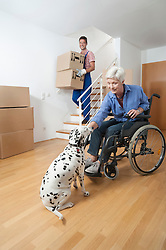 Handicapped old woman stroking dog while movers walking down cardboard boxes, Bavaria, Germany