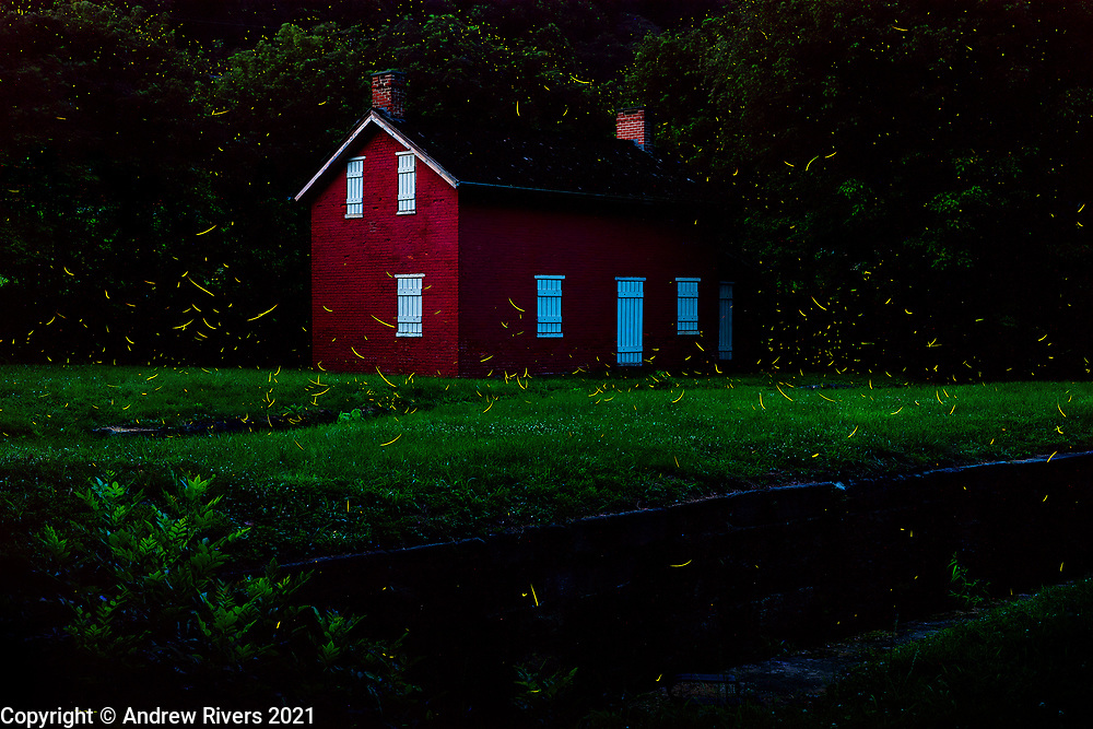 Fireflies have returned for the summer. Lock 31