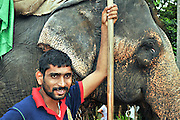 Sri Lanka, Negombo portrait of an elephant trainer