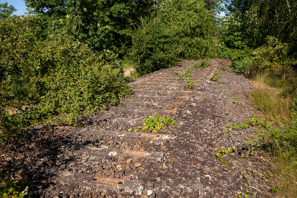 tracks of the former tank loading station at the lake Pionierbecken 3 in the Koenigsforest near Cologne, North Rhine-Westphalia, Germany. A relic from the time when the area was a military training area.<br /> <br /> Gleise der ehmealigen Panzerverladestation am Pionierbecken 3 im Koenigsforst bei Koeln, Nordrhein-Westfalen, Deutschland. Ein Relikt aus der Zeit als das Gebiet Truppenuebungsplatz war.