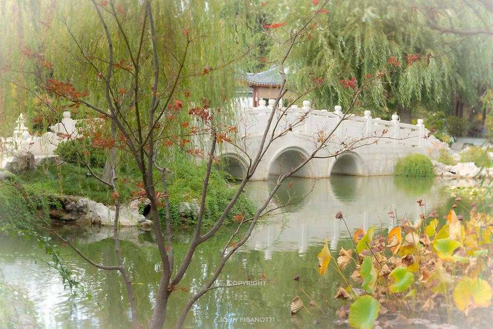 A bridge in the Chinese Garden, Huntington Gardens, San Marino, California