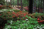 Callaway Gardens