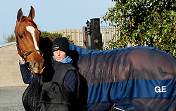 Samcro with his groom Jack Madden at the stable yard at Down Royal Racecourse.