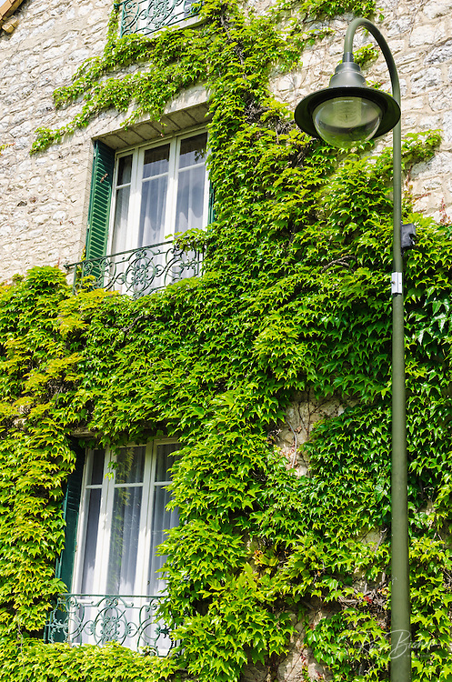 Ivy covered window at Claude Monet house and gardens, Giverny, France