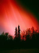 Brilliant red and green aurora in the early evening hours during the geomagnetic storm on November 5, 2001, view southwest over boreal forest near the Little Susitna River valley, Alaska.