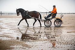 Beach training met Christiaan Provoost (NED) <br /> Strand Domburg 2014<br /> © Dirk Caremans