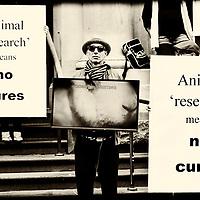 Animals in Laboratories Protest