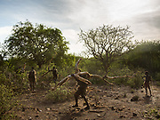 Gnogna and friends getting wood. Staying in Mandagao camp in Mangola, a touristic destination to see the Hadza community.