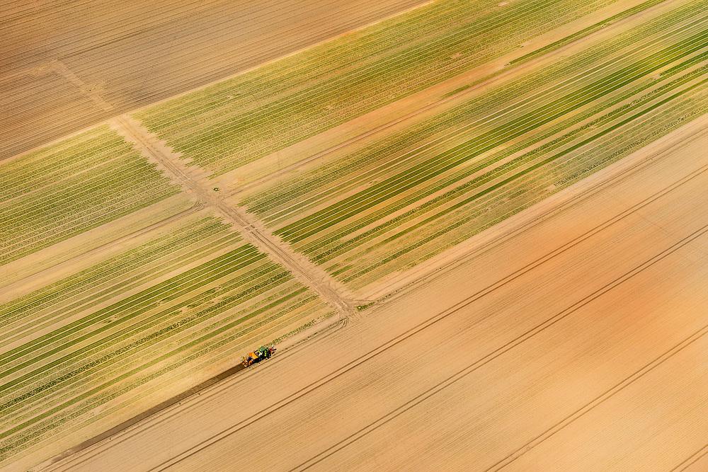 Nederland, Gelderland, Veluwe, 29-05-2019; velden van kwekerij van graszoden, omgeving Nieuw-Milligen.<br /> Fields of turf nursery.<br /> <br /> luchtfoto (toeslag op standard tarieven);<br /> aerial photo (additional fee required);<br /> copyright foto/photo Siebe Swart