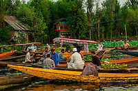 The early morning floating market on Dal Lake in Srinagar, Kashmir, Jammu and Kashmir State, India.