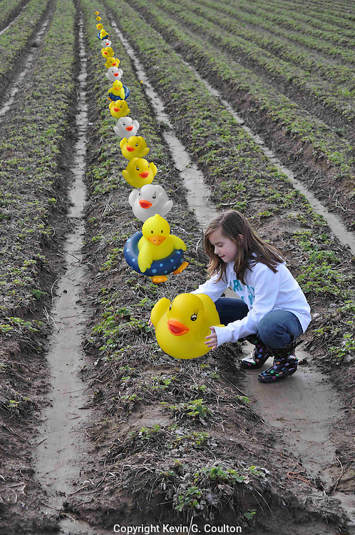 """Humorous photograph of a girl in a farm field placing rubber duckies on one of the crop rows visually depicting the saying """"Get your ducks in a row!"""""""