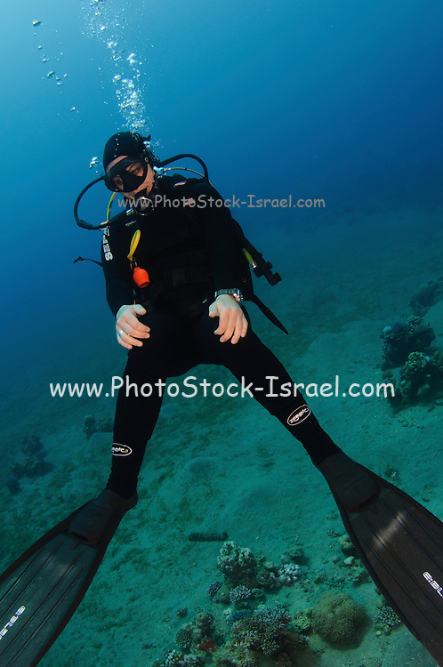 A scuba diver poses for the camera Photographed in the red sea Aqaba, Jordan