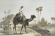 machine colorized The Hirkarrah Camel From the book ' The Oriental annual, or, Scenes in India ' by the Rev. Hobart Caunter Published by Edward Bull, London 1834 engravings from drawings by William Daniell