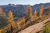 Pacific Crest Trail near Granite Pass. North Cascades Washington