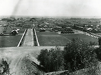 1906 Hollywood from the hills above Normandie Ave.