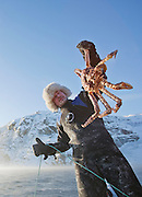 A diver looks at the King Crab he has caught in a lake at Jarfjord, near Kirkeness, Finnmark region, northern Norway