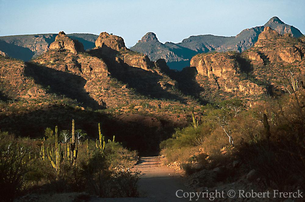 MEXICO, BAJA CALIFORNIA Sierra de la Giganta, Camino Real