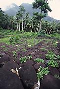 Taaoa meae (temple), Hiava Oa, Marquesas, French Polynesia<br />