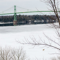 https://Duncan.co/deer-and-1000-islands-bridge