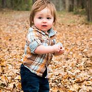 Hudson Fall Mini