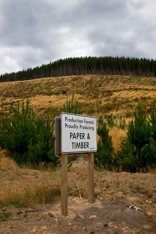 """""""Production Forests Proudly Producing Paper and Timber"""" - Clearcut replanted with plantation forest, Fitzgerald, Tasmania. Sign by Forestry Tasmania"""