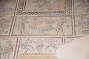 Israel, Lower Galilee, Zippori National Park The city of Zippori (Sepphoris) A Roman Byzantine period city with an abundance of mosaics Mosaic floor of the roman villa. Dionysus Mosaic