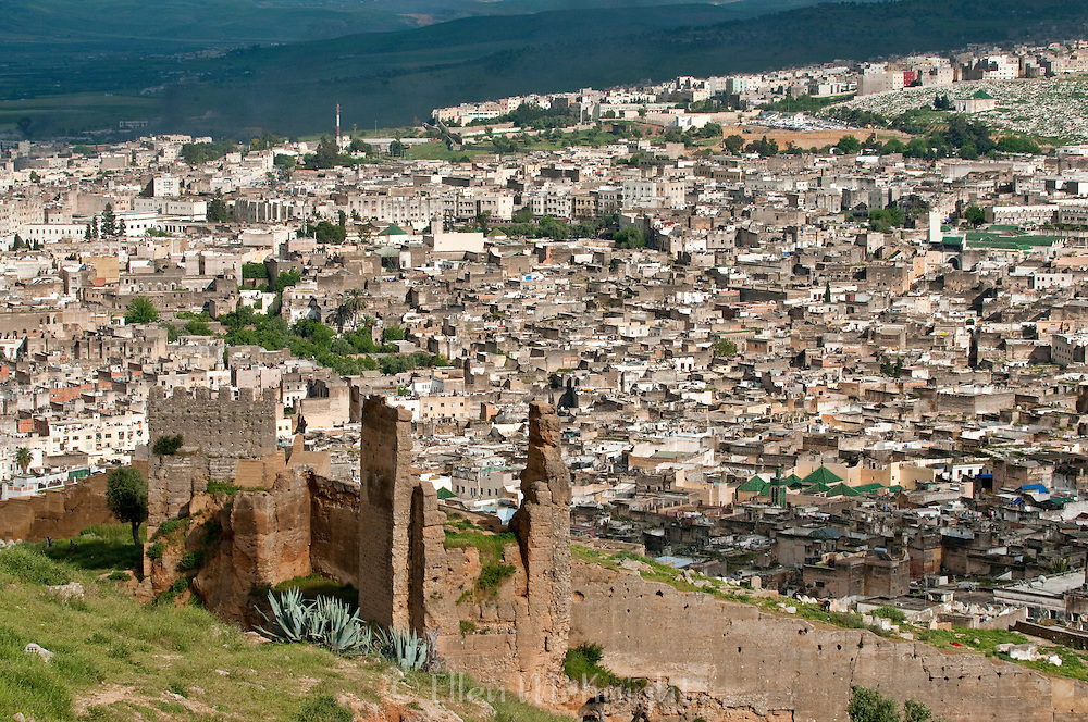 Medina of Fes with old walls