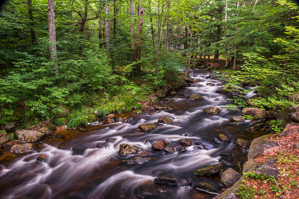 Water flows along river in summer forest, Ashby, MA